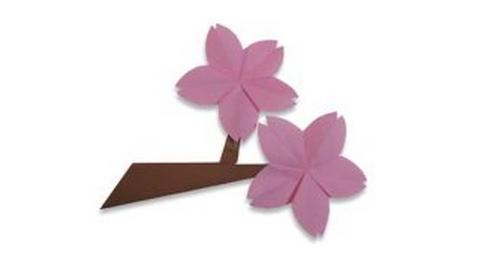 цветы вишни оригами