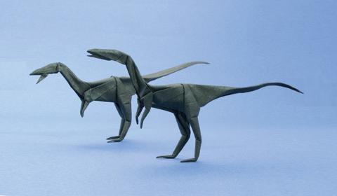 Целофиз оригами