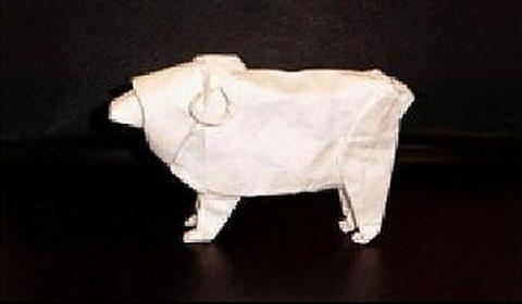 Овца · Баран