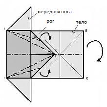 баран4