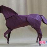 Конь(+видео)