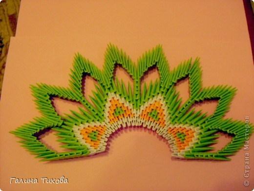 модульное оригами павлин14