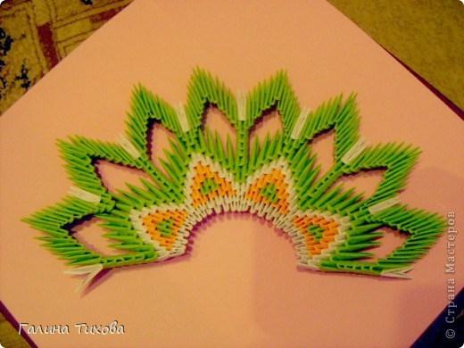 модульное оригами павлин15