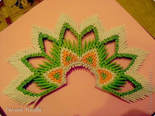 модульное оригами павлин17