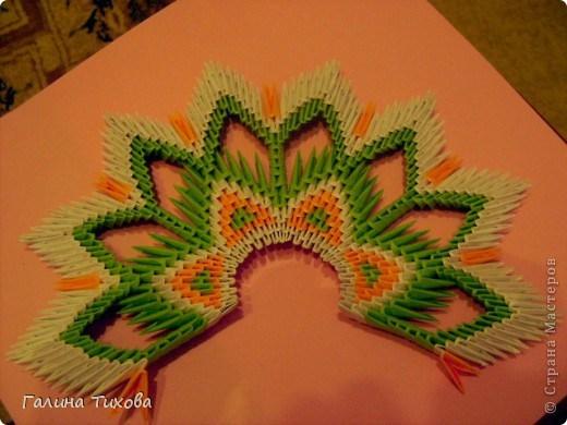 модульное оригами павлин18