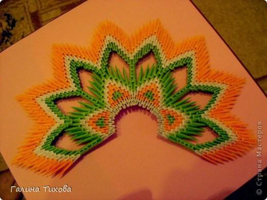 модульное оригами павлин19