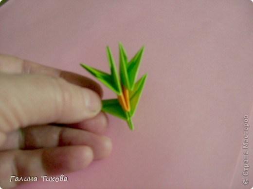 модульное оригами павлин21