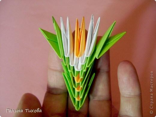 модульное оригами павлин25