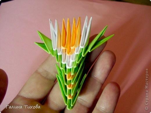 модульное оригами павлин26