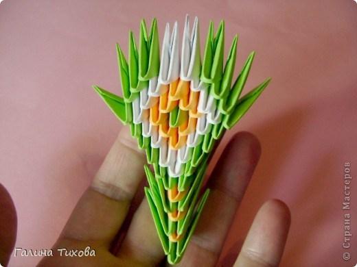модульное оригами павлин30