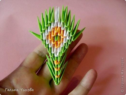 модульное оригами павлин31