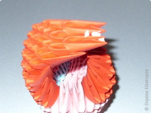 попугай модульное31