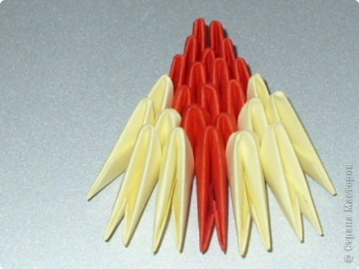 попугай модульное49