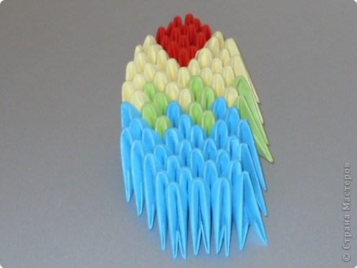 попугай модульное60