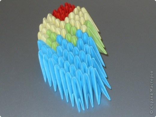 попугай модульное62