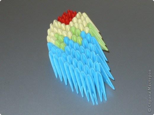 попугай модульное63