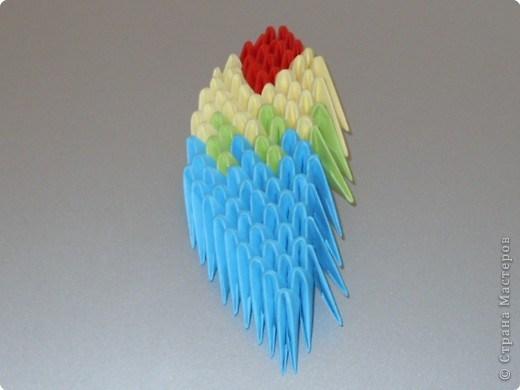 попугай модульное64