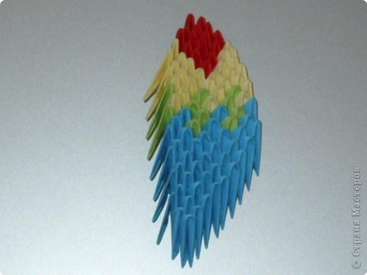 попугай модульное65