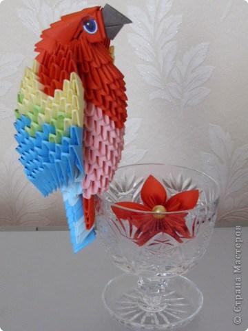 попугай модульное68