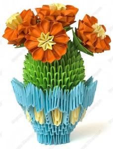 цветущий кактус31
