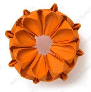 цветущий кактус9