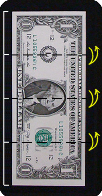 бабочка из денег 1