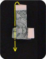 кольцо из денег 13