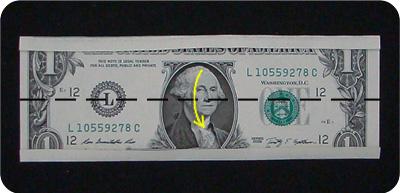 кольцо из денег 2