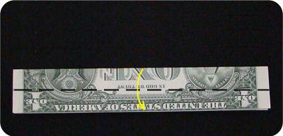 кольцо из денег 3