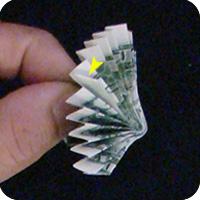 павлин из денег оригами 17