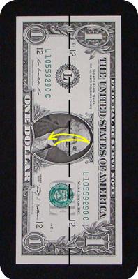 сосна из денег 1