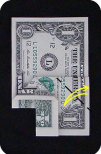 сосна из денег 10