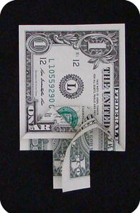 сосна из денег 13