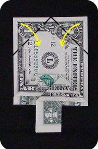 сосна из денег 14