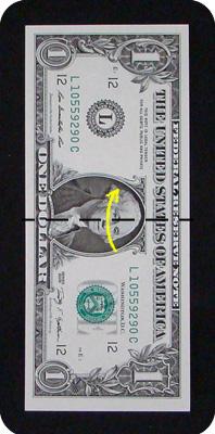 сосна из денег 2