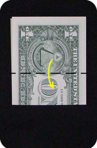 сосна из денег 3