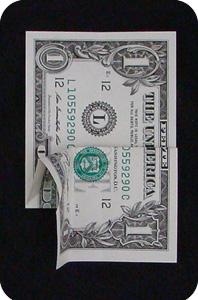 сосна из денег 8