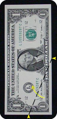 ёлка из денег 5