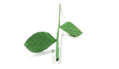стебель розы оригами 22