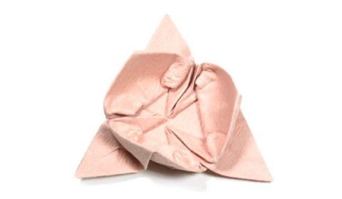 африканский ирис оригами 23