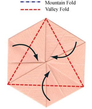 африканский ирис оригами 5