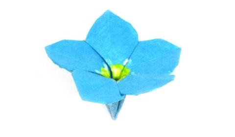 незабудка оригами 37