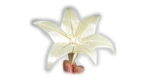 лилия оригами из бумаги 44