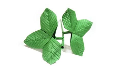 листья тройные 8