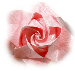 объёмная роза из бумаги 71