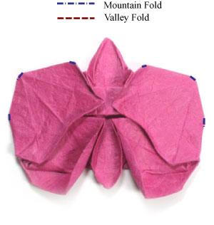 орхидея из бумаги 38