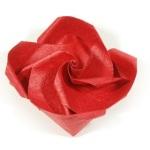 Простая роза