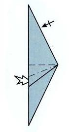конёк морской 2